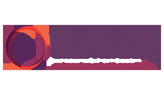 New Village Girls Academy Logo